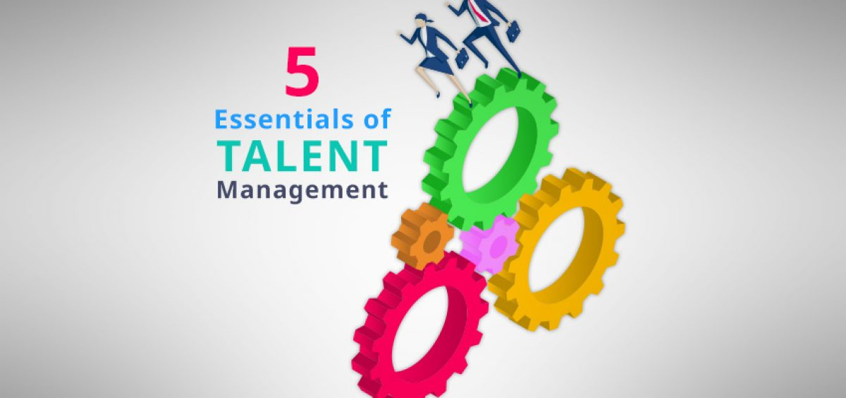 5 essentials talent management career pathing succession planning talent management software
