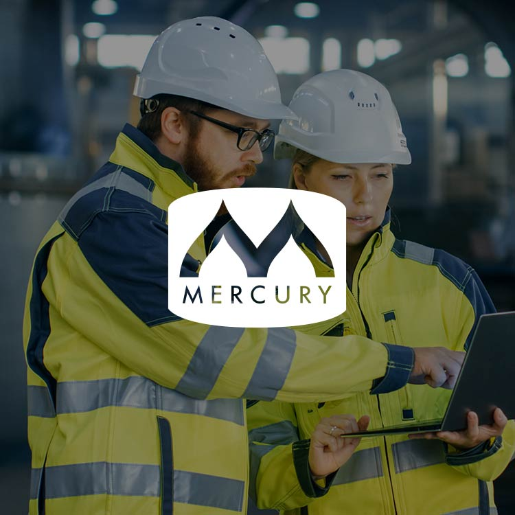 Mercury Engineering Case Study